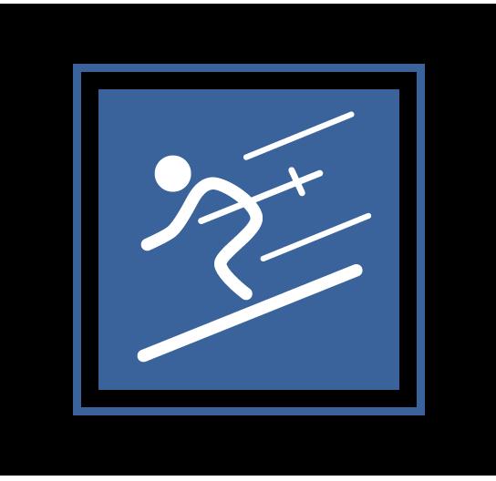 Ski Icon Intermediate